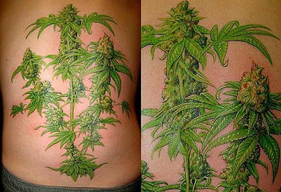 Tatuaż z marihuaną duży